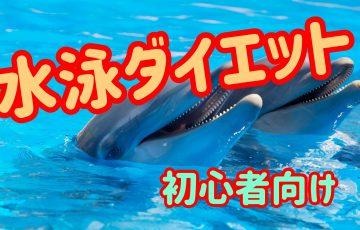 水泳ダイエット(初心者向け)