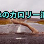 水泳のカロリー消費